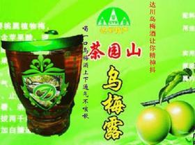 中国乌梅之乡达州生态乌梅酒一件24瓶起订包邮