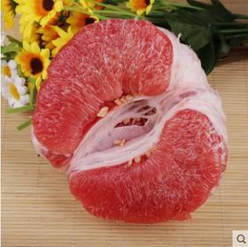 现摘红心柚子 平和蜜柚琯溪红肉蜜柚新鲜孕妇水果5斤
