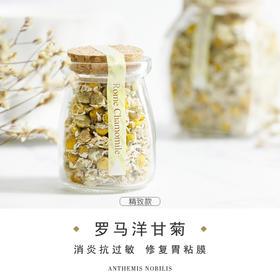 任10送1【满88包邮】塔泽 罗马洋甘菊-花冠-小瓶装-花