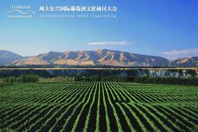【12.10】顶级名庄大师班:新西兰风土名家Kumeu River与TWR庄主品鉴(上下场联票)