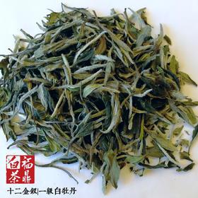 福鼎白茶|郑源茶业十二金钗一级白牡丹100g