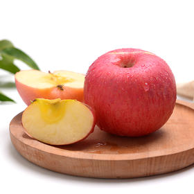 吃一口就会爱上的亚洲第一高山果园红苹果,河南灵宝苹果。纯天然方法种植,果香四溢,口感香脆