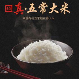 【正宗五常稻花香】黑龙江乔府大院 五常有机稻花香大米