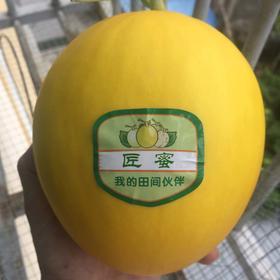【南海网微商城】海南乐东鲁加蜜 匠蜜金甜瓜 2个装 包邮
