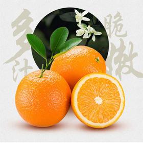 赣南脐橙 原产地发货 原生态 现摘现发