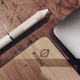 优派 (ViewSonic) 手写板 绘画板 数位板 绘图板 WoodPad 顺丰包邮