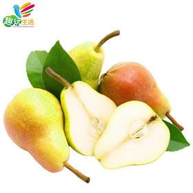 【趣玩云商】新疆库尔勒香梨 一级梨 单果约100-120g