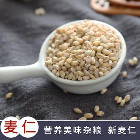 麦仁米煮粥 农家麦仁 去皮小麦仁 大麦米粗粮杂粮粥五谷杂粮
