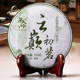 【熊猫微店】【普洱】云巅初茗 云南普洱茶(生茶)100克