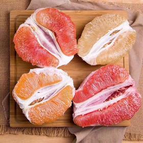【限乌市地址!】福建平和DIY彩柚礼盒 白柚/红柚/黄柚/三红柚(5kg左右/礼盒,含4种柚子送水彩笔)
