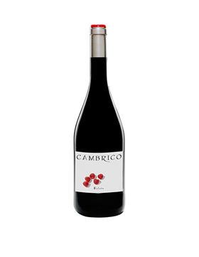 寒武纪庄园鲁菲特干红葡萄酒2008/Cambrico Rufete 2008