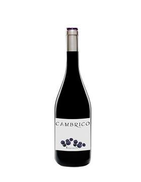 寒武纪庄园坦帕尼奥干红葡萄酒2008/Cambrico Tempranillo 2008