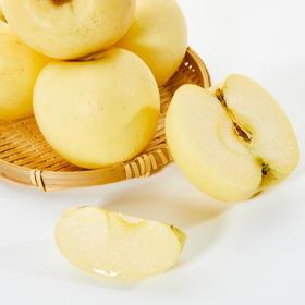 金富士苹果    整整晚下树45天 自然成熟后脆甜多汁 香气十足 5-6斤/件