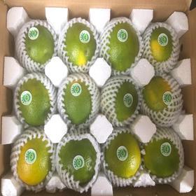 【南海网微商城】正宗海南琼中绿橙 皮薄多汁 包邮