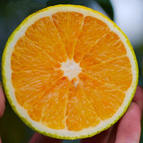 【南海网微商城】海南白沙特产 龙江红心橙 皮薄多汁