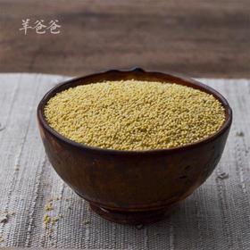 「农家小米」长白山有机种植