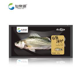 【仙泉湖】白蕉海鲈400g-500g*2包(仅限珠三角地区配送)