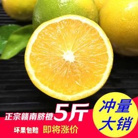 【美货】正宗赣南脐橙5斤赣州手剥甜橙子新鲜水果现摘现发包邮