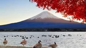 富士山经典路线一日游 (富士山五合目&忍野八海&御殿场Outlet)