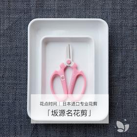 「坂源名花剪」,超过百年历史的日本名花剪。她的存在,可以让你再多花些时间在无用的美好上。
