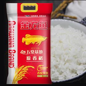 金龙鱼原香稻5KG-860037