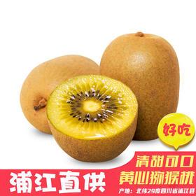 四川 蒲江黄心猕猴桃 香甜多汁 维生素高 果园现摘包邮 不催熟 不冷藏 原生态