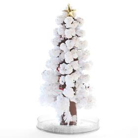 台湾原装会开花的圣诞树,28cm超大号