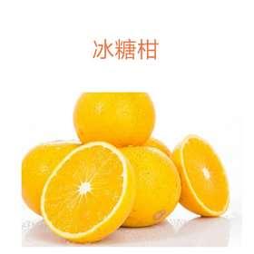 【果果生鲜】新鲜冰糖柑 一斤装