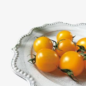 水果番茄(赛柠)