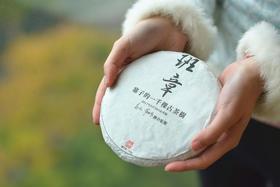 《班章寨子的一千颗古茶树》|这是一款可以作为教学标准的样茶
