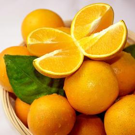 【好吃不上火】湖南永兴冰糖橙
