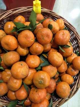 【果果生鲜】新鲜红泡柑  一斤装