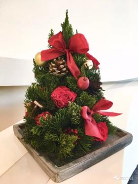 圣诞主题插花日| DIY专属你的圣诞树