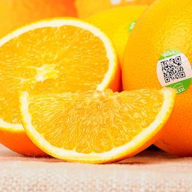 【第二件立减20元!】农夫山泉17.5度脐橙 铂金果(3kg/件,含14-16个左右)