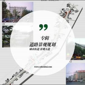 道路景观设计与规划作品 高速公路 城市街道 步行街 景观街道 自行车街道