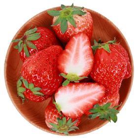 严选|四川双流新鲜冬草莓 奶油巧克力冬草莓 精选2斤装 现摘现发 鲜果包邮