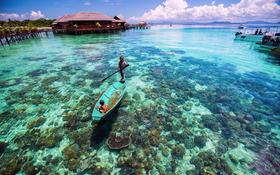 【马来西亚】畅游沙巴—从亚庇到仙本那的海岛体验7日行(全年多期)