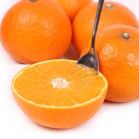 [有赞拼团]新鲜漳河果冻橙岛橙3斤左右