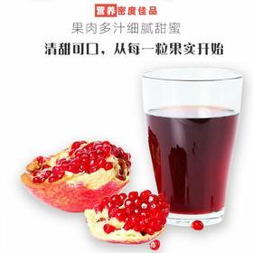 陕西临潼石榴新鲜大果红鲜甜多汁12枚单果6两产地直供顺丰包邮