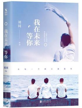 刘同新书套装(一套四本)