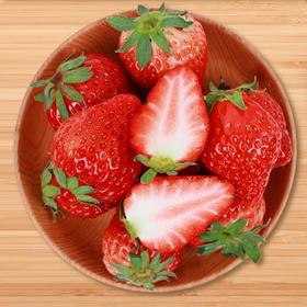 【限乌市地址!】丹东牛奶草莓 新鲜美味(1.5kg/件,含65粒左右,具体以重量为准)