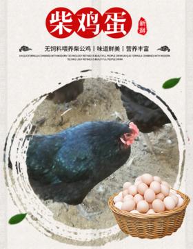 【北坡村】南山散养柴鸡蛋/绿壳乌鸡蛋(30枚)
