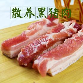 【岳西县】【大别山岳西黑猪肉】国家地理标志产品/国家级贫困县/精选黑猪肉/快递直发