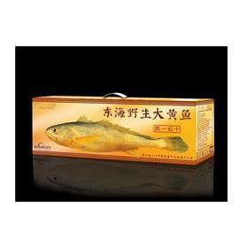 预售 东海野生大黄鱼【新鲜】礼盒装 下单发货 四种规格 江浙沪包邮