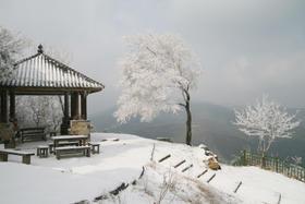 1.27冬季徒步莫干山,走蒋公道,看大竹海(1天)