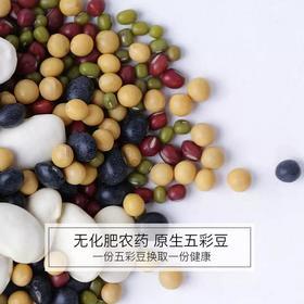 有机五彩豆 一顿吃到五种豆类的营养 高蛋白质 低热量 减脂瘦身健身餐 降三高 降血糖