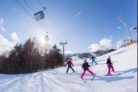 春雪行程:富良野+大雪山7天5滑