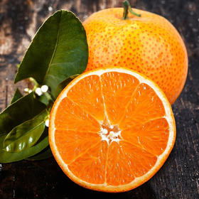 【顺丰包邮】广东四会沙糖橘  超甜蜜桔(2.5kg/5kg/件,限乌市地址!)