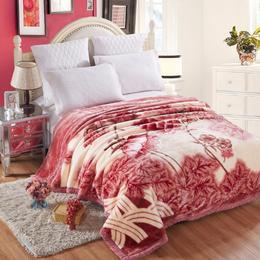 毛毯拉舍尔毯子 冬季礼品加厚双层盖毯 不掉毛超柔厚毛毯
