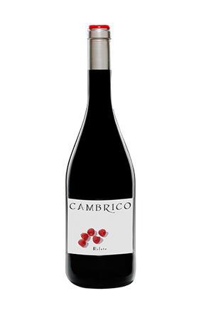 寒武纪庄园鲁菲特干红葡萄酒2010/Cambrico Rufete 2010